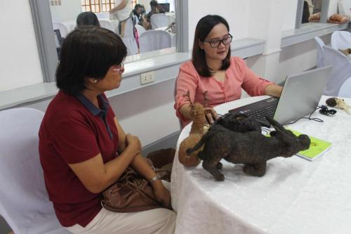 Pulilan Handicraft initial consultation with Designer